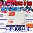 S_iij_bigsim_touroku