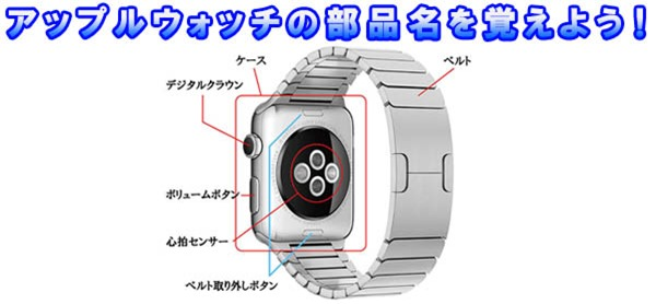 applewatch-parts-name-t