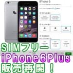 【販売再開!】iPhone 6 Plus simフリー版! (おすすめ格安sim&日本アップルオンラインストアー購入方法!)