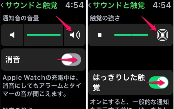 apple-watch-sound-touch-feel-2