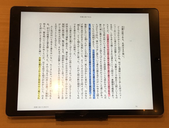 10-ipad-pro-novel