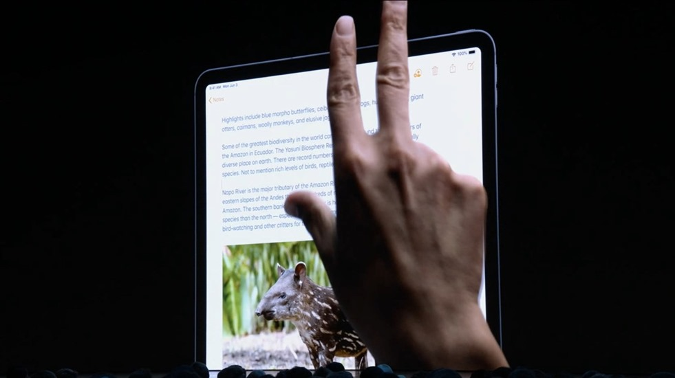 9-wwdc-2019-ipad-os-copy-and-paste