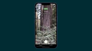 28-apple-iphone13-wood.jpg