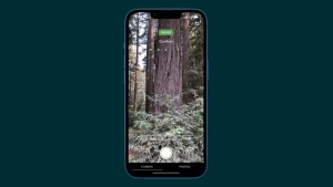 28-apple-iphone13-wood_thumb.jpg