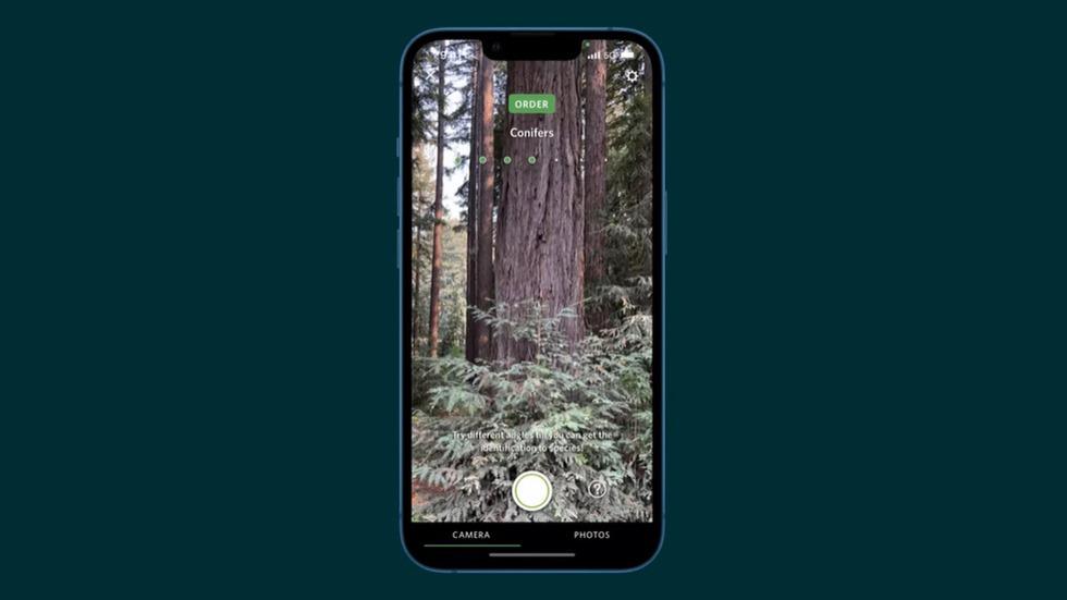 28-apple-iphone13-wood