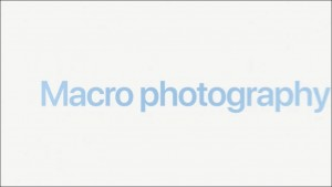 45-apple-iphone13-pro-micro-photo_thumb.jpg
